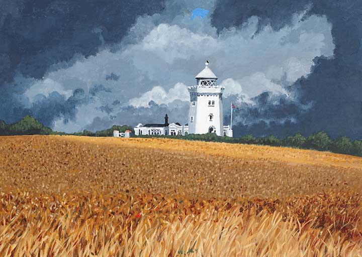 MSA-Wheat-Field