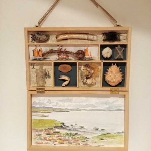 Box beach combing art