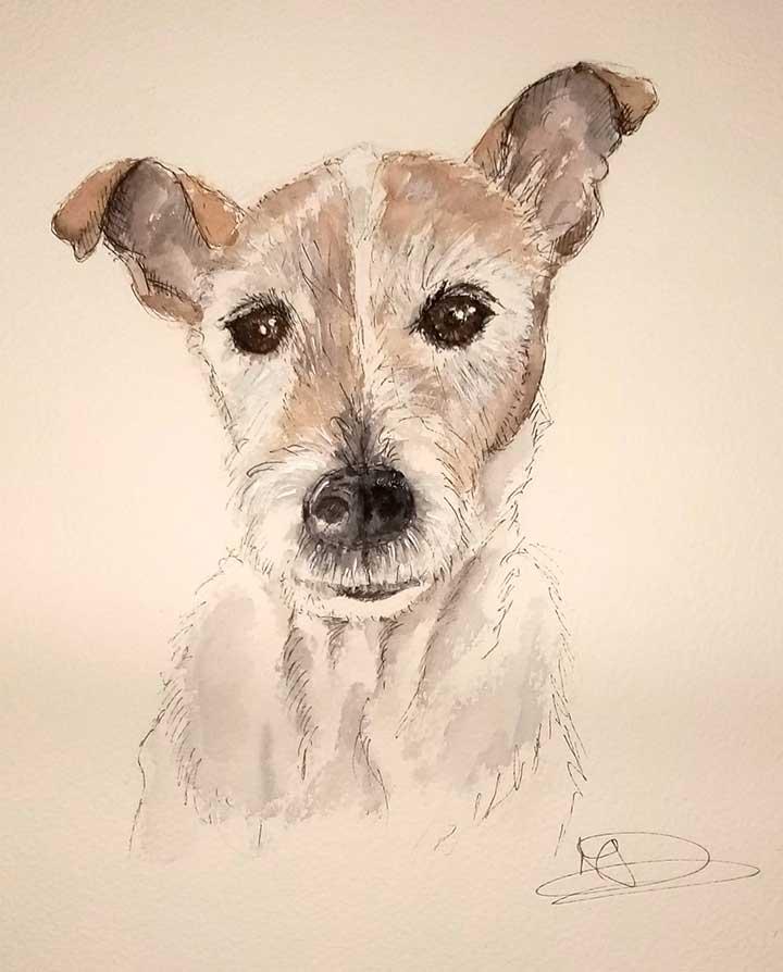 Jack-Russell-Pet-Portrait