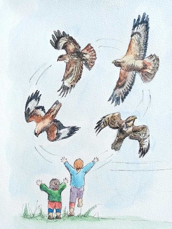 children-many-bird-above